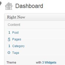 WordPress PHP Programming